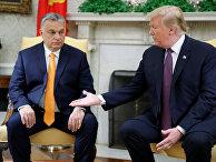 Президент США Дональд Трамп и премьер-министр Венгрии Виктор Орбан в Овальном кабинете Белого дома