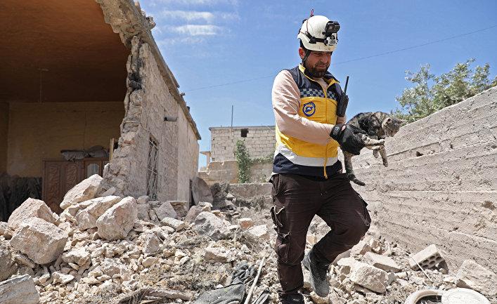Член неправительственной добровольческой организации «Белые каски» спасает кошку из обломков здания после обстрела в городе Хайт, Сирия