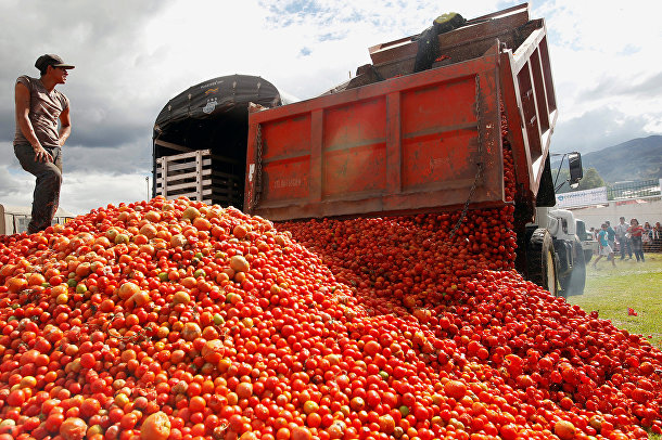 "Разгрузка помидоров для ежегодного праздника ""Томатина"" в Бояке, Колумбия"