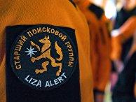 """Шеврон поисково-спасательного отряда """"Лиза Алерт"""""""