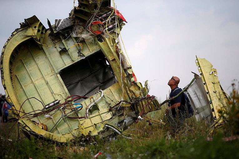 Следователь осматривает место крушения рейса MH17 авиакомпании Malaysia Airlines