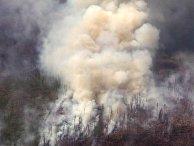 Ликвидация лесных пожаров в Иркутской области