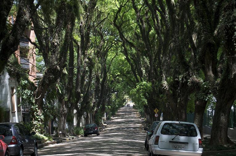 Улица Гонсалу ди Ковалью в Порту-Алегри, Бразилия