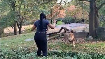 Смертельно опасные танцы со львом