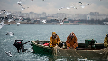 Прибрежный лов рыбы в Севастополе