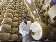 Производство итальянского сыра в Биббиано, Италия