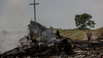 На месте крушения малайзийского самолета Boeing 777 в районе города Шахтерск Донецкой области