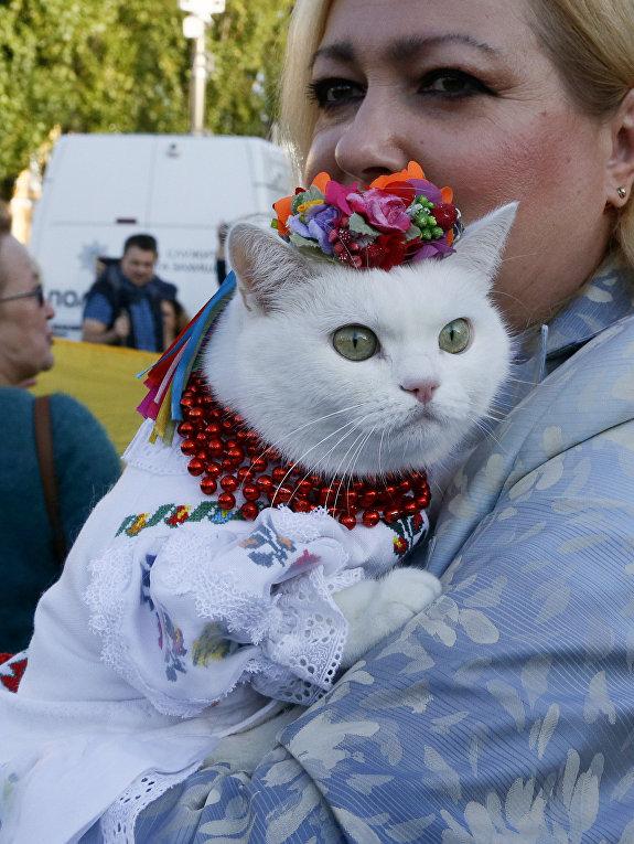 Женщина с кошкой на митинге, приуроченного ко «Дню защитника Украины» в Киеве