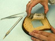 Образец хлеба в лаборатории пищевых продуктов в Колумбусе, штат Огайо
