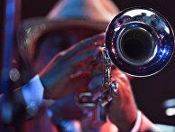 Музыкант во время выступления на фестивале