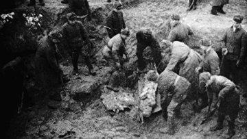 Эксгумация могил в Катыни