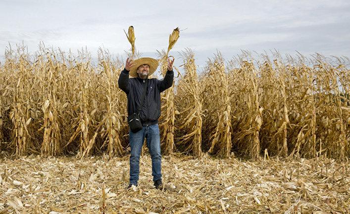 Украинский фермер в селе Небелица