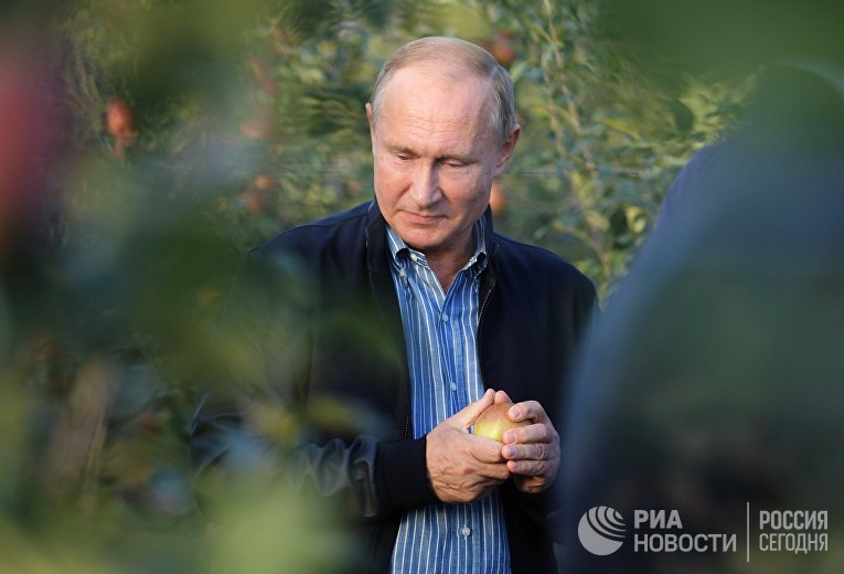 Президент РФ Владимир Путин во время посещения яблоневых садов