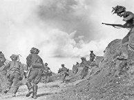Солдаты «Голубой дивизии» в битве под Ленинградом в 1943 году