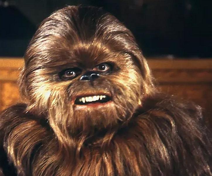 Кадр из специального выпуска «Звездных войн» (1978)
