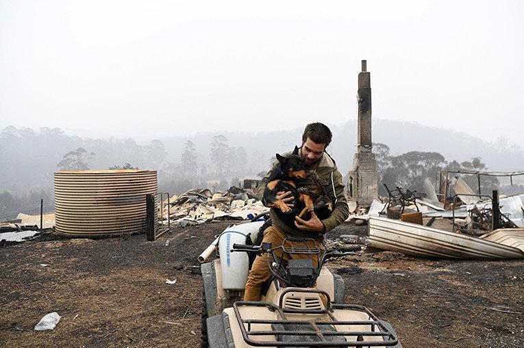 Мужчина спасает собаку в разрушенном лесными пожарами городе Кайе, Австралия