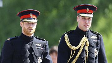 Принцы Великобритании Гарри и Уильям