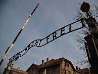 """Музей на территории бывшего концентрационного лагеря """"Аушвиц-Биркенау"""" в польском Освенциме"""