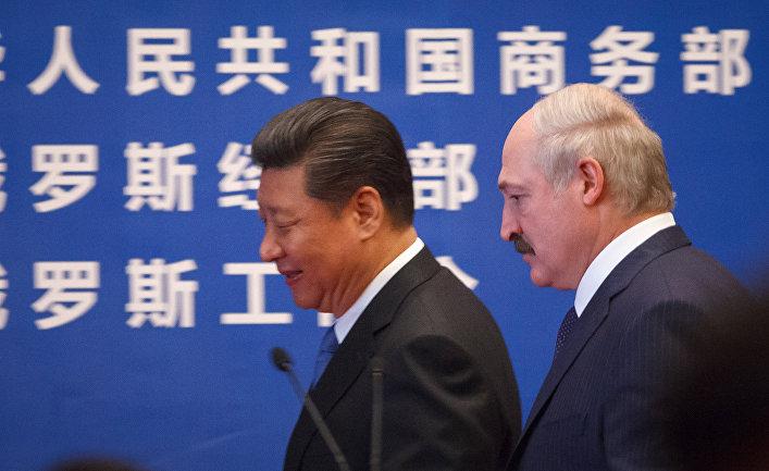 Встреча президента Белоруссии Александра Лукашенко с председателем КНР Си Цзиньпином в Минске