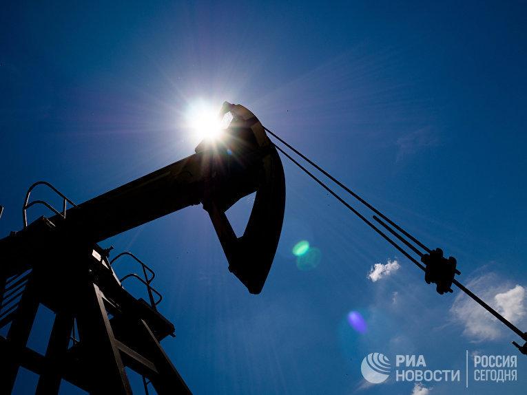 Нефтяной станок-качалка в Северском районе Краснодарского края