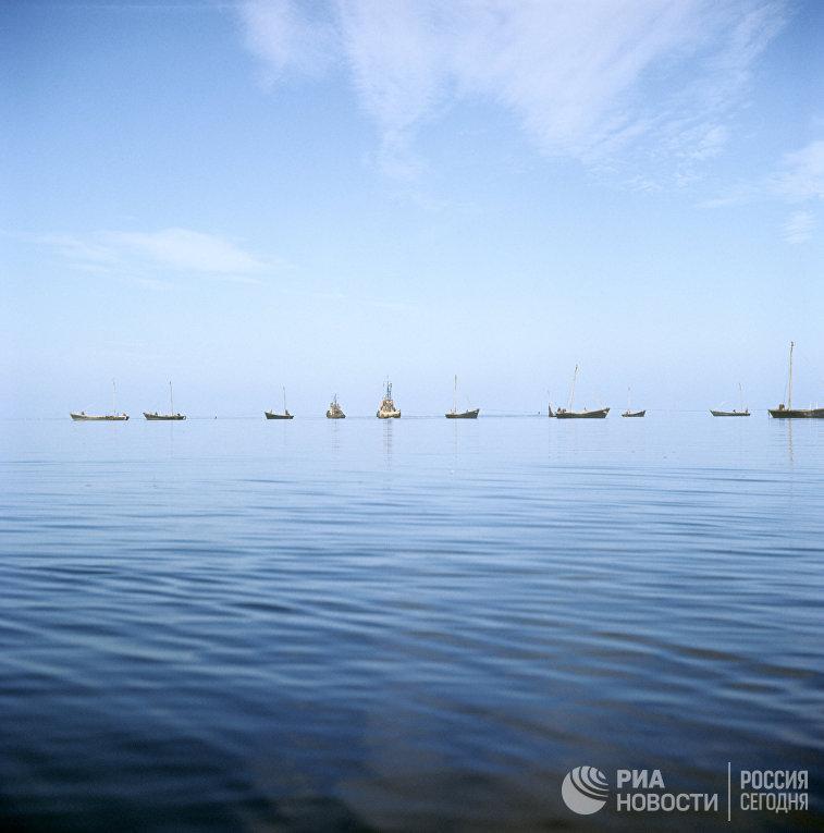 Рыболовецкие суда на промысле в заливе Буссе