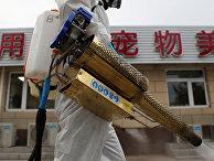 Дезинфекция рынка Наньгун в Пекине, Китай
