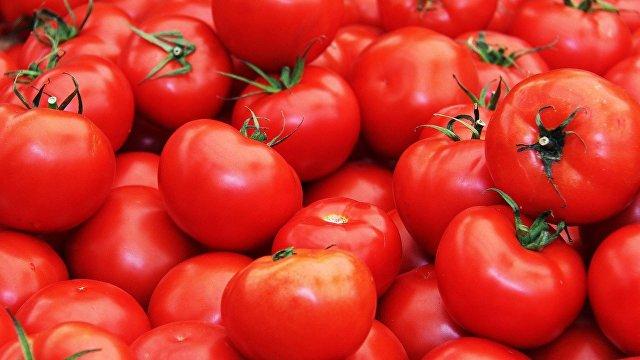 ABC (Испания): какие факторы влияют на вкус помидоров