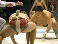 Во время поединка по сумо. 2-ой Открытый чемпионат Москвы по сумо среди мужчин и женщин.