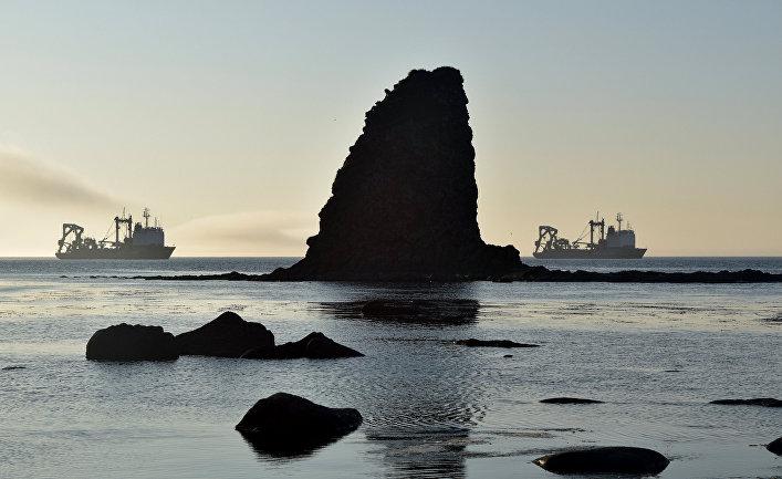 Килекторные суда Тихоокеанского флота на рейде в Новокурильской бухте острова Уруп (остров южной группы Большой гряды Курильских островов).