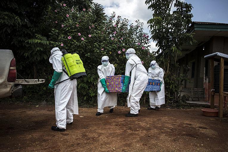 Медицинские работники выносят тело пациента с неподтвержденным вирусом Эбола в Мангине, Республика Конго