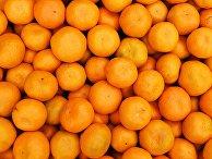 Продажа мандаринов на границе России и Абхазии