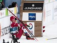 Лыжные гонки. Чемпионат мира. Мужчины. Масс-старт