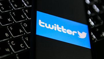 Логотип социальной сети Twitter на экране мобильного телефона