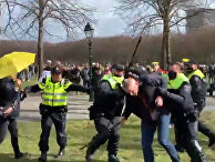 Разгон протестующих в Гааге