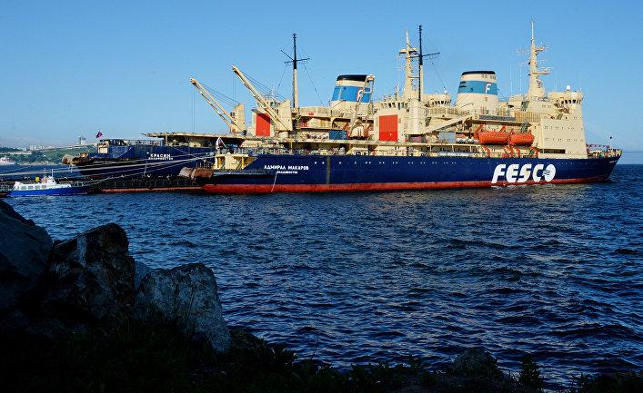 Ледоколы компании FESCO во Владивостоке