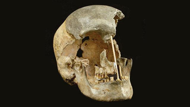 Nature (Великобритания): старейшая ДНК представителей вида хомо сапиенс говорит о его близкой связи с неандертальцами