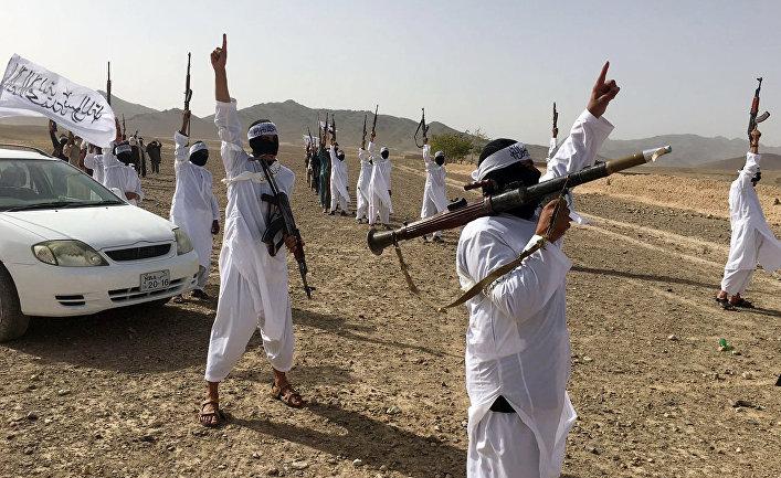 Последователи течения Талибана* Mahaaz-e-Dadullah