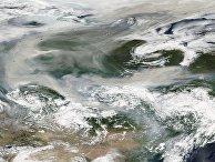 7 августа 2021. Дым лесных пожаров в Якутии достиг Северного полюса