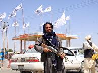 "Боевик ""Талибана""* в Газни, Афганистан"